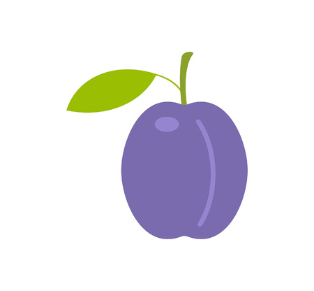 Plum. flat style. isolated on white background Ilustrace
