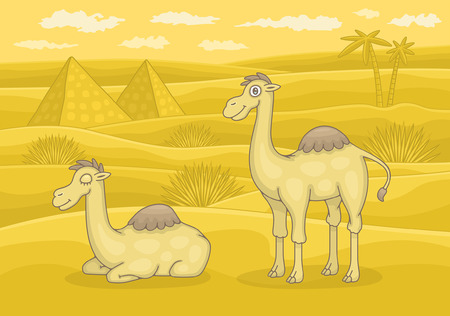 Two camels in desert. Funny cartoon and vector illustration