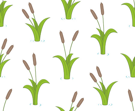 Seamless pattern with bulrushes. isolated on white background