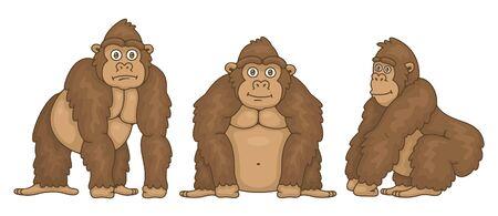 Set of Gorillas. isolated on white background Illustration