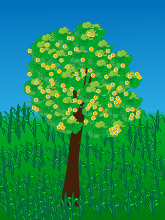 lonely tree: Lonely tree with yellow flowers