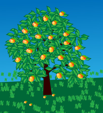 lone: vector lone apple tree with ripe apples