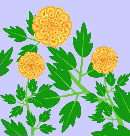 dahlia: branch of yellow orange dahlia Illustration