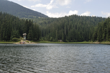 Mountain Lake Synevir in the Ukrainian Carpathians