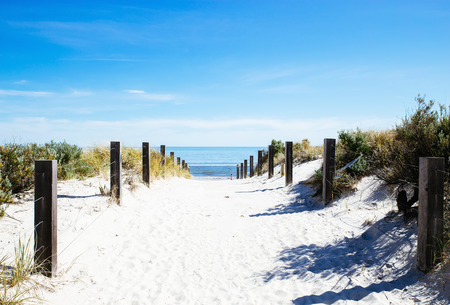 Beach path with wooden fence on a sunny day