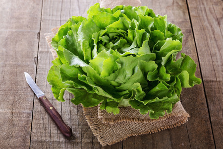 lactuca: Single organic butter lettuce head over wooden rustic background Stock Photo