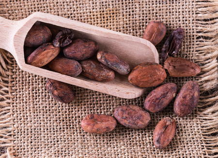 Raw cacao beans on a wooden scoop over burlap cloth background. Top view, close up Banco de Imagens