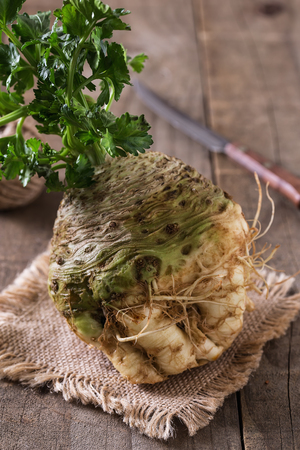 Textured celeriac root with stems on burlap cloth on wooden rustic background