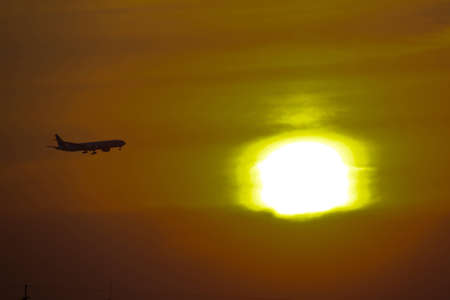 Airplane is landing to airport with sundown background. photo