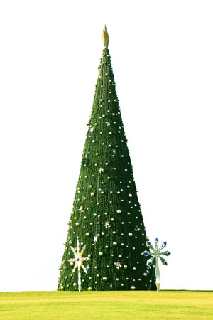 It is a Christmas tree come with joyful happiness and celebration . photo