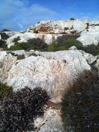 Maltese cliff Reklamní fotografie