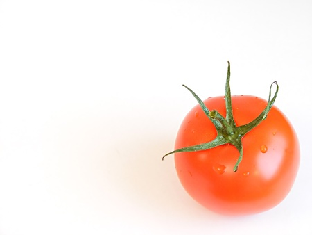 Photo of a tomato isolated on white background Stock Photo - 8274594