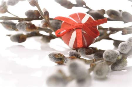 arbol de pascua: Rojo Huevo de Pascua con un manojo de Amentos sobre fondo blanco