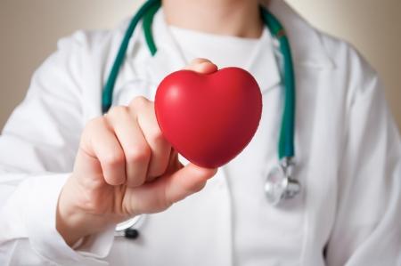 heart disease: Corazón rojo en la mano de un médico