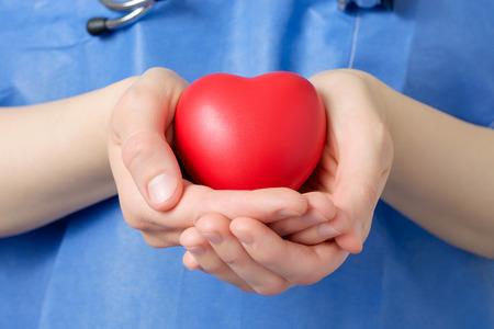 organ donation: Doctor de sexo femenino que sostiene una forma de coraz�n rojo Foto de archivo
