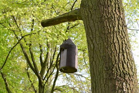 frhling: fodder troughs for birds