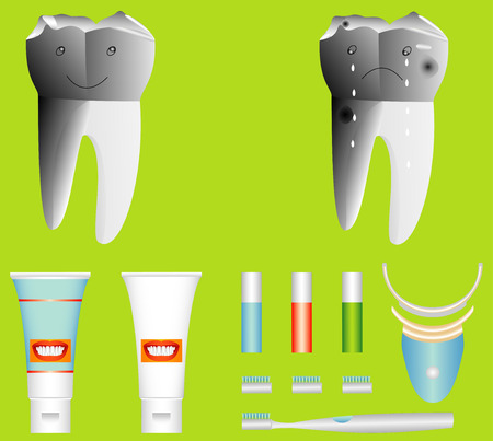 fresher: Human Teeth  Illustration from unhealthy and healthy tooth