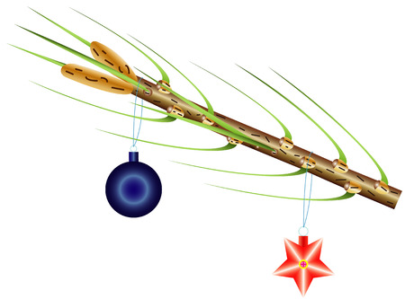 furtree: Christmas toy on a branch of a fur-tree isolated on the white