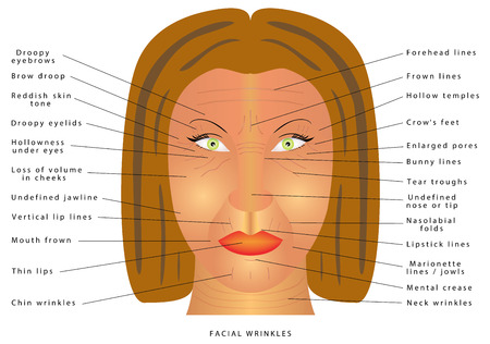 ageing: Ageing face changes. Facial Wrinkles. Folds and wrinkles on the face of woman. Wrinkles and skin of elderly. Correction of wrinkles on face. Causes of wrinkles. Facial muscle tensity