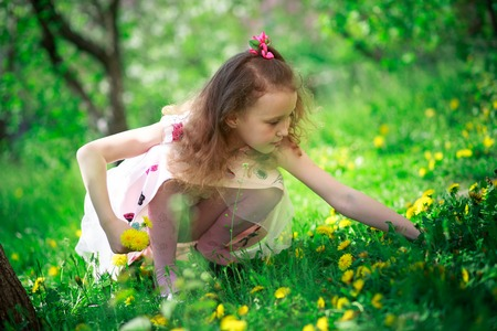 Little beautiful girl with long curly hair collects dandelions and sniffing flowers in spring. Allergy season, insects. Happy baby on walk. Kids without gadgets. child hold bouquet of dandelions.