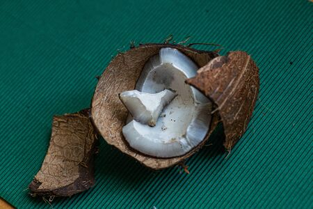 ugly organic broken rotten coconut. peel and white insides of a moldy coconut. Spoiled foods. Stock fotó