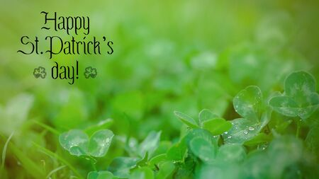 Text Happy Saint Patricks Day shiny green clover ornament. Green clover leaves with drops of dew or rain close up. St. Patricks Concept