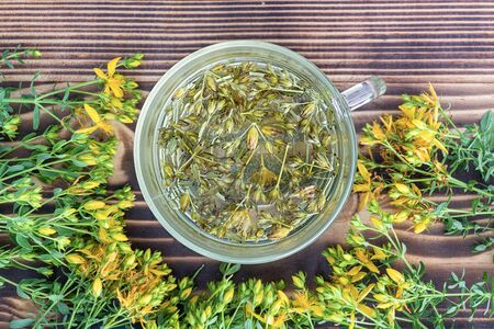 Hypericum - St Johns wort plants yellow flower used in alternative medicine. Herbal tea in transparent cup. Useful homeopathic elexir on wooden table