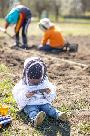 little girl in beekeeper's suit sits in vegetable garden with a smartphone while brothers plant potatoes. Children and technology. Help adults during the landing season