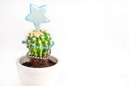 Tropical summer cactus looks like Christmas tree dressed in garland and with Christmas star on top with copy space. ... New Year's banner isolated on white background. Minimal flat lay Christmas theme. New year sale concept