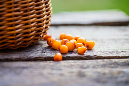 buckthorns of berries are scattered on a wooden table of a basket