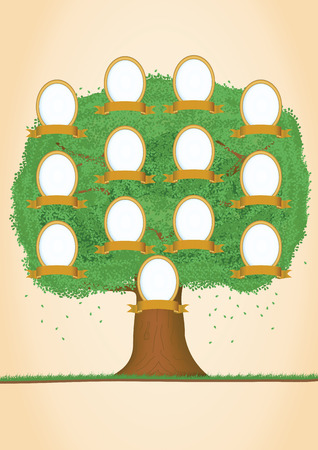 Genealogical tree. Green tree. Vector illustration