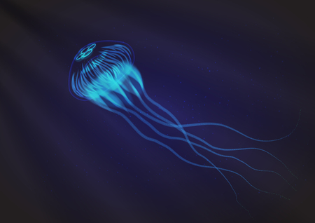 Jellyfish. Vector illustration, eps10