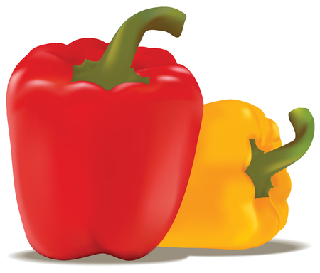 Red and yellow paprika in vector Illustration