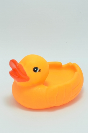 duck toy photo