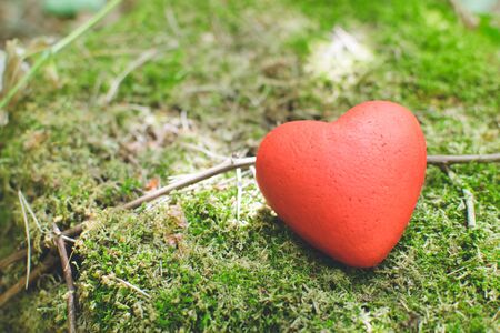 Decorative red heart lying on the moss in the forest. Love concept Banque d'images