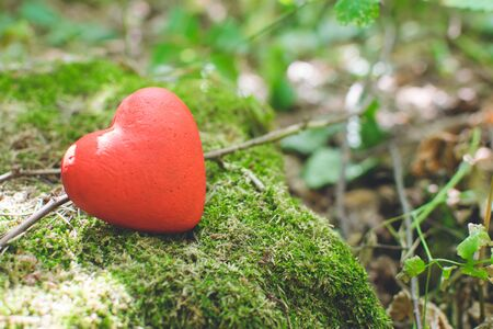 Love concept. Red decorative heart in the forest.