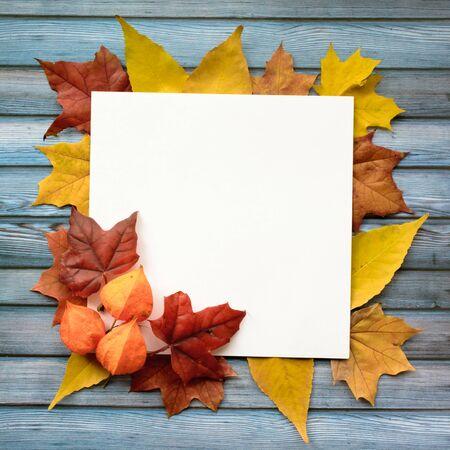 Composizione autunnale di foglie d'acero e carta bianca quadrata. Disposizione piatta, vista dall'alto