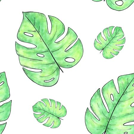 Watercolor hand drawn seamless pattern with monstera leaves isolated on white