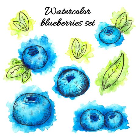 Set of hand drawn watercolor blueberries on white