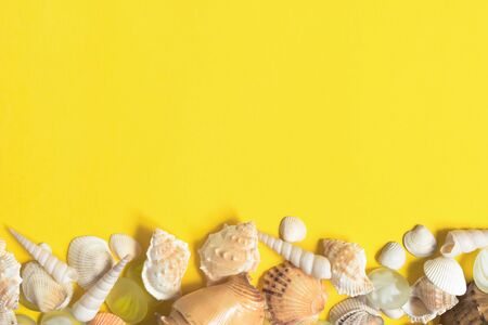 Summer flat lay. Frame of shells of various kinds on a yellow background. Seashells on a pastel background. Vacation concept, free space for text.
