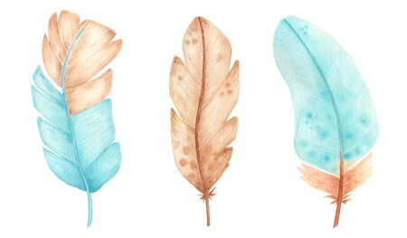Hand drawn watercolor feathers. Set of colorful feathers sketch.