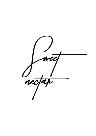 Sweet nectar hand drawn lettering in modern brush calligraphy isolated on white background.