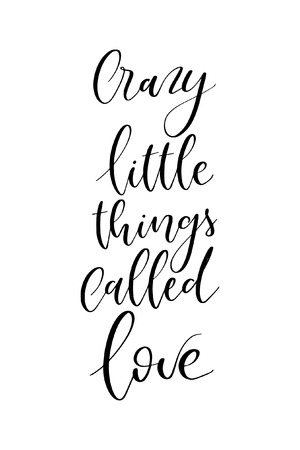 Hand drawn word. Brush pen lettering with phrase Carry little things called love. Ilustração