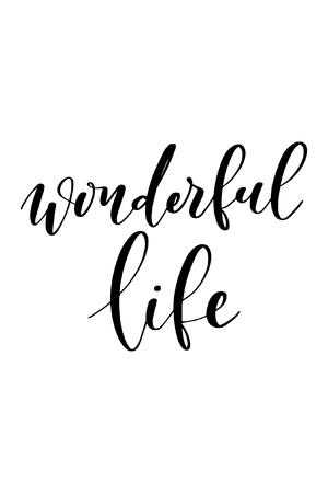 Hand drawn word. Brush pen lettering with phrase Wonderful life. Ilustração