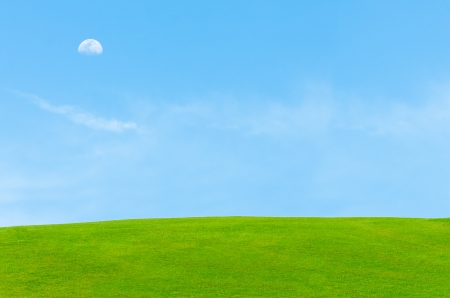 beautiful clear early morning blue sky with moon and green grass field