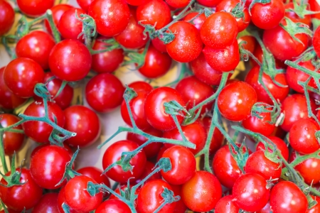 group of small red japanese fresh tomato Stock Photo