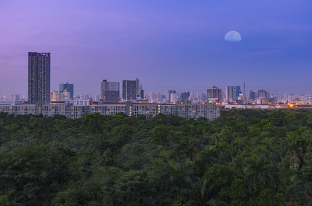 large green forest in big business district city under early morning moon sky twilight Stock Photo