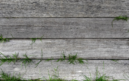 textured old wood stripe in horizontal line with green grass Stock Photo