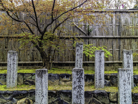 engrave japanese lettering granite stone pillar on green moss step with sakura tree and bamboo fence in background Stock Photo