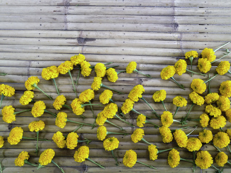 group of random marigold flower on bamboo wood horizontal stripe background in top view